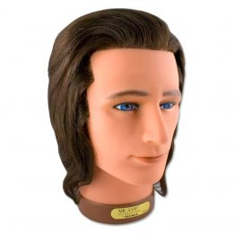 Male Manikin Training Head